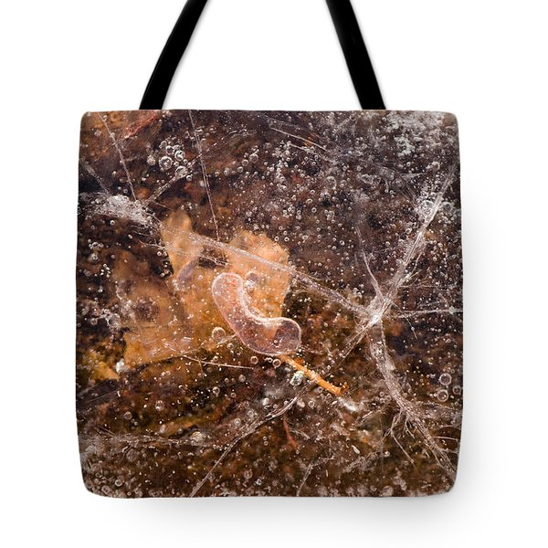 Leaf In Ice Tote Bag by Anne Gilbert