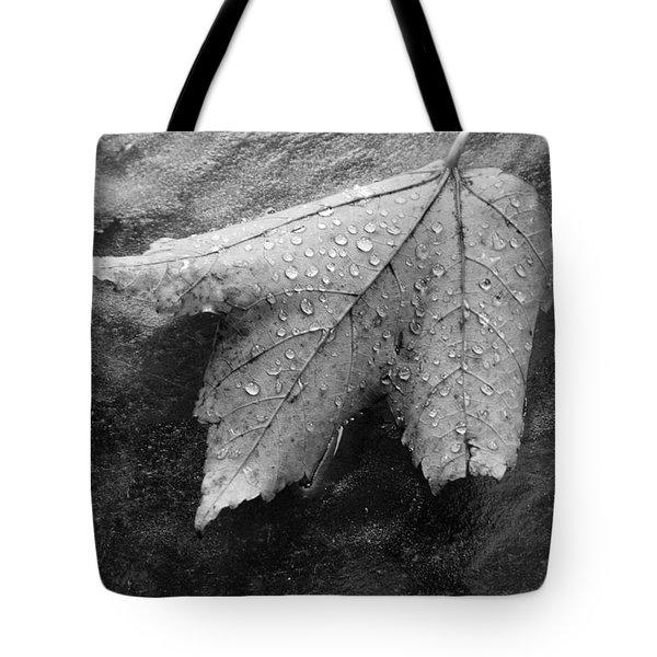 Leaf On Glass Tote Bag