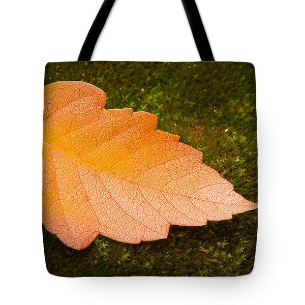 Leaf On Moss Tote Bag by Adam Romanowicz