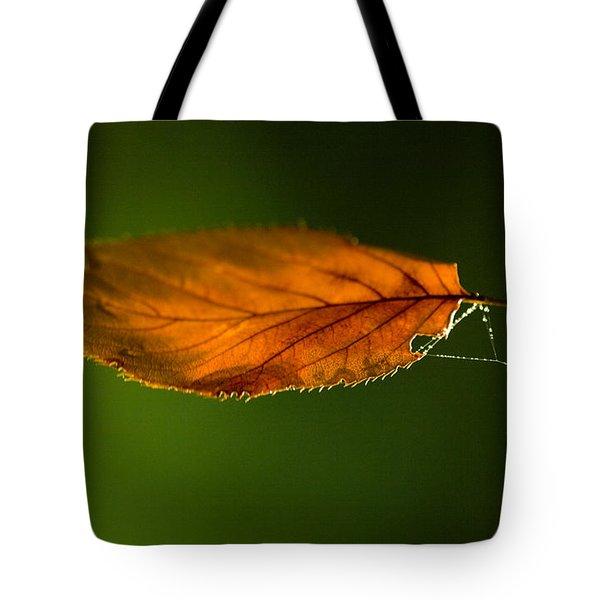 Leaf On Spiderwebstring Tote Bag