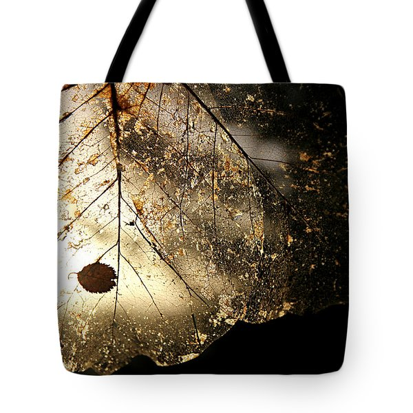 Tote Bag featuring the photograph Faerie Wings II by Katie Wing Vigil