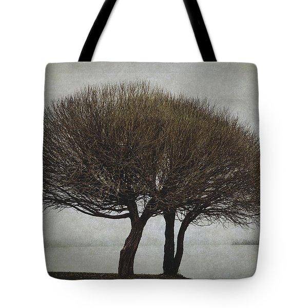 Leafless Couple Tote Bag