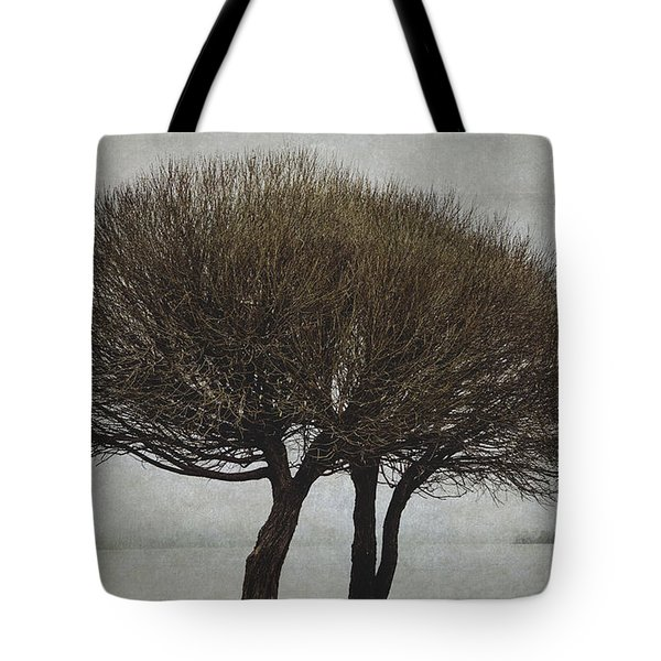 Tote Bag featuring the photograph Leafless Couple by Ari Salmela