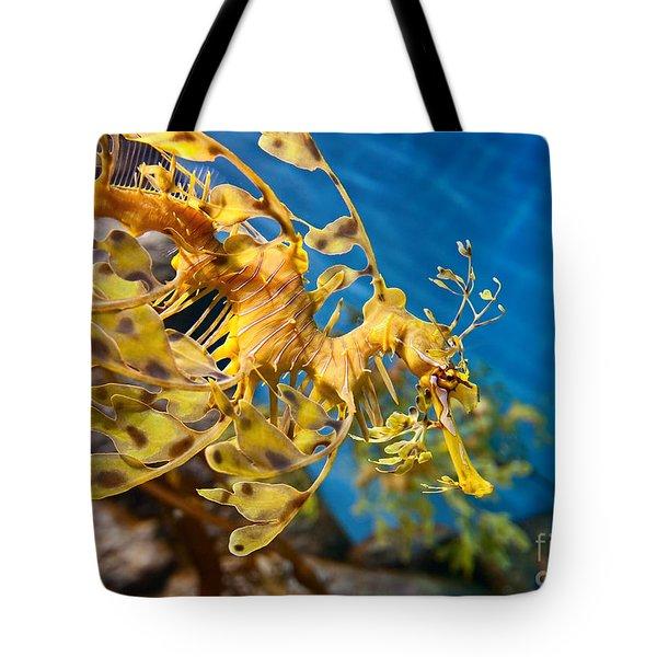 Leafy Sea Dragon Phycodurus Eques. Tote Bag by Jamie Pham