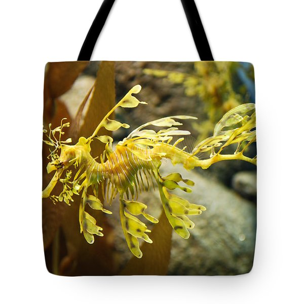 Tote Bag featuring the photograph Leafy Sea Dragon by Shane Kelly