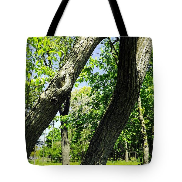 Tote Bag featuring the photograph Lean On Me by Robyn King