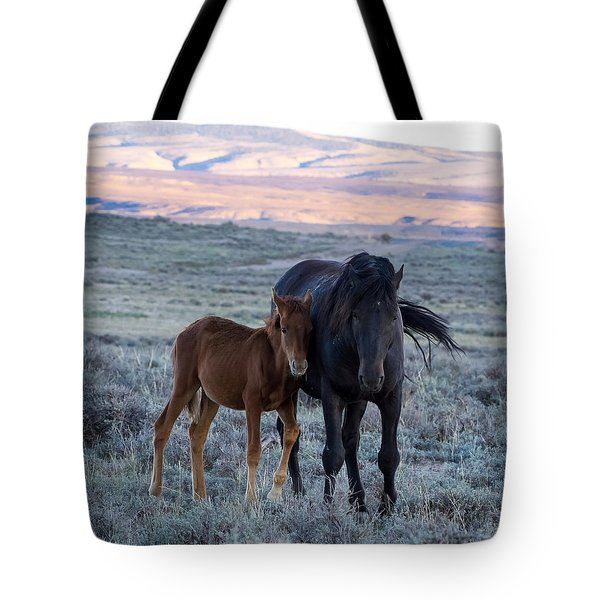 Lean On Me... Ruby And Coal Tote Bag