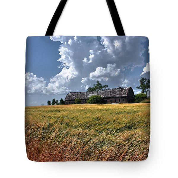Leaning Barn 2 Tote Bag