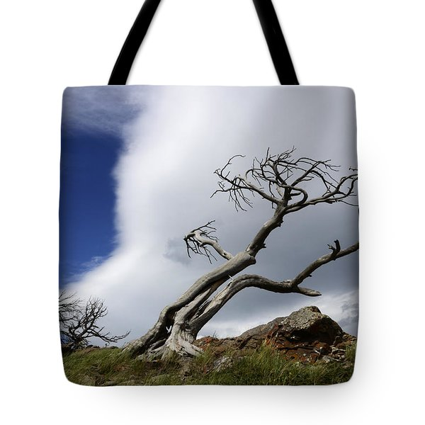 Leaning Just A Little Tote Bag by Bob Christopher