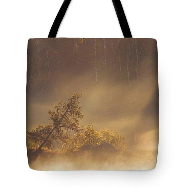 Leaning Tree In Swirling Fog Tote Bag by Larry Ricker