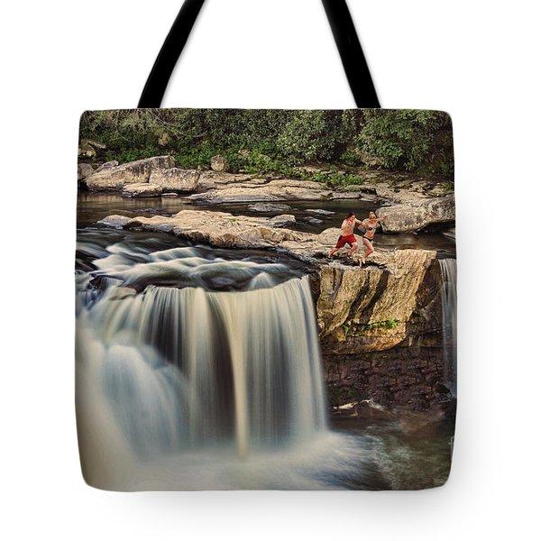 Leap Of Faith Tote Bag by Dan Friend