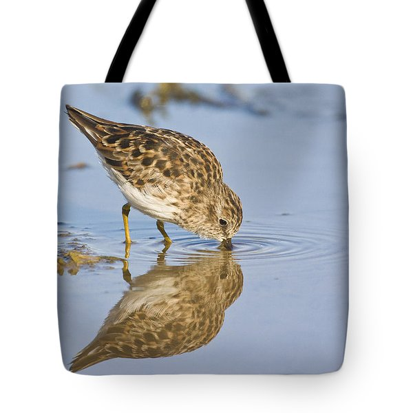 Least Sandpiper With A Reflection  Tote Bag