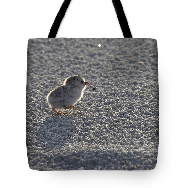 Least Tern Chick Tote Bag by Meg Rousher