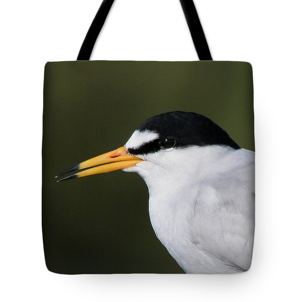 Tote Bag featuring the photograph Least Tern Portrait by Bob and Jan Shriner