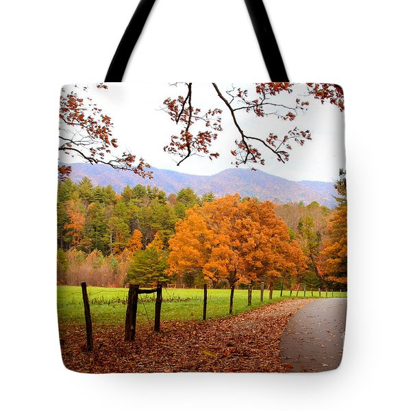 Tote Bag featuring the photograph Leaves A'fallin by Geraldine DeBoer