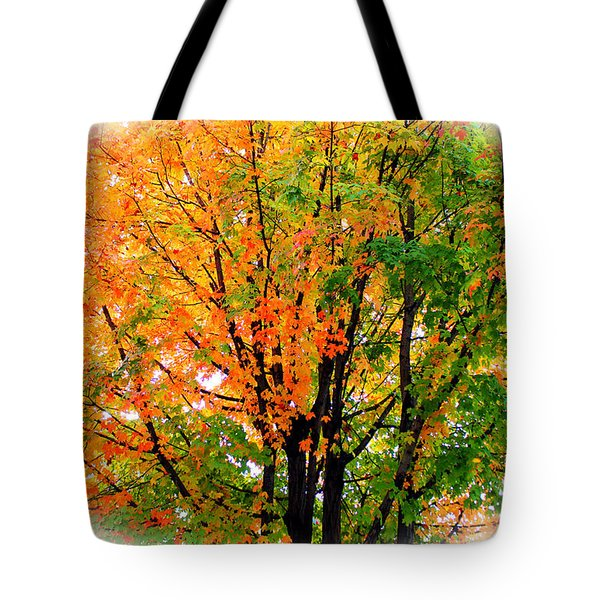 Leaves Changing Colors Tote Bag by Cynthia Guinn