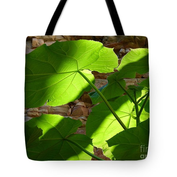 Leaves In Shadow Tote Bag