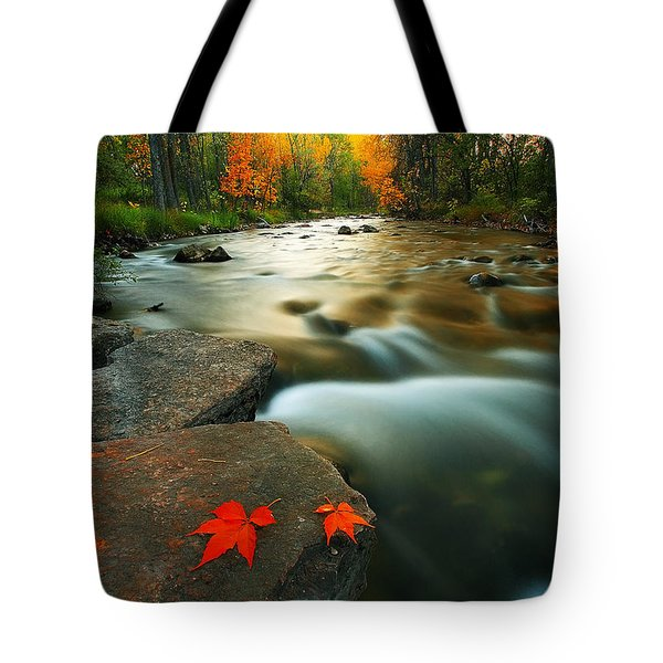Tote Bag featuring the photograph Leaves by Kadek Susanto