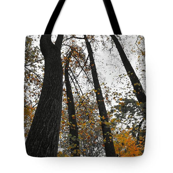 Tote Bag featuring the photograph Leaves Lost by Photographic Arts And Design Studio