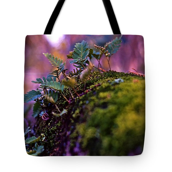 Leaves On A Log Tote Bag