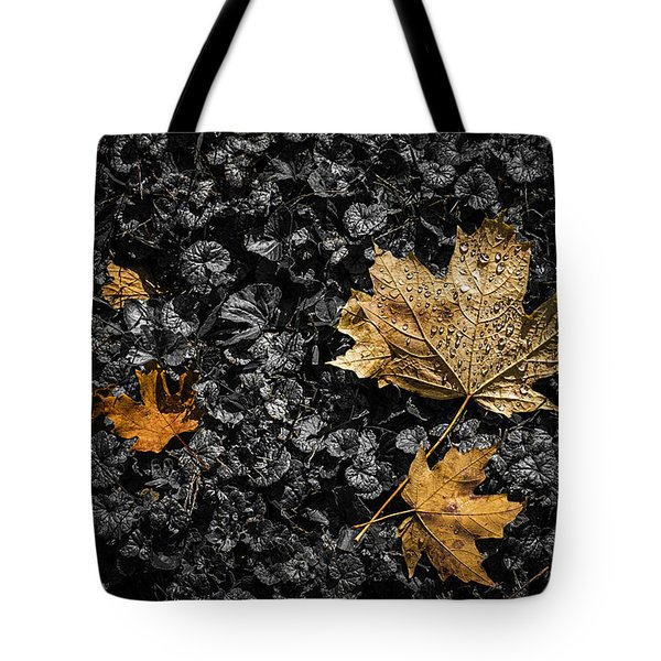 Leaves On Forest Floor Tote Bag