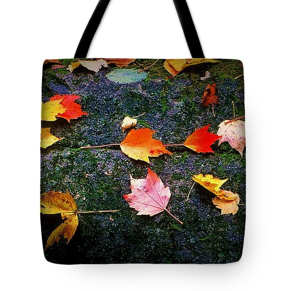 Leaves On Rock  Tote Bag