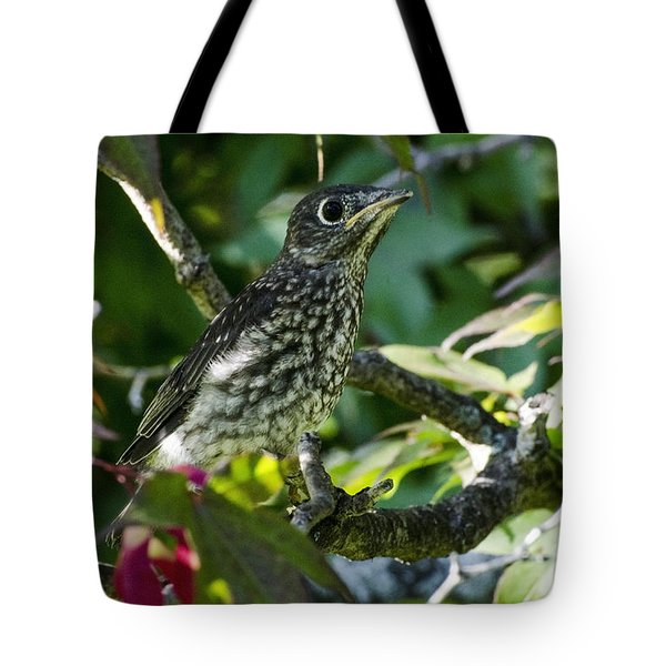 Left The Nest Tote Bag