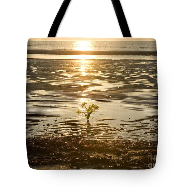 Tote Bag featuring the photograph Leftover Bouquet by Carol Lynn Coronios