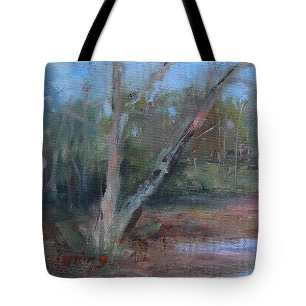 Leiper's Creek Study Tote Bag by Carol Berning