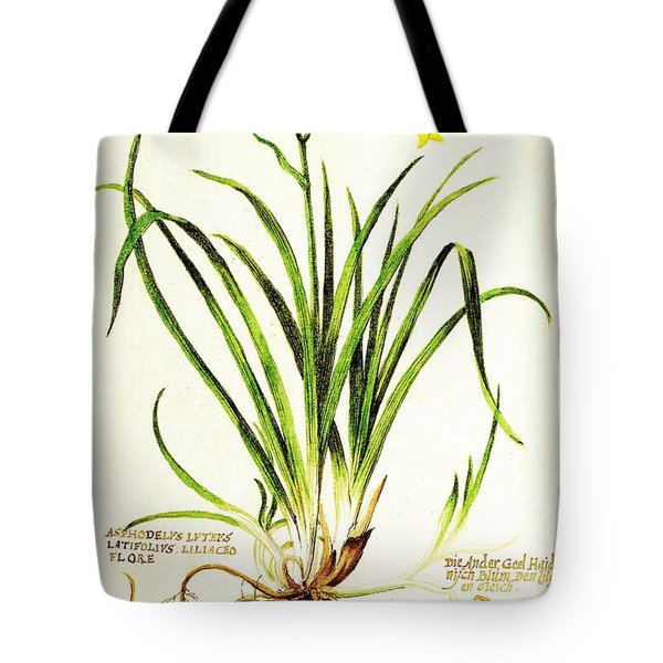 Lemon Daylily Botanical Tote Bag