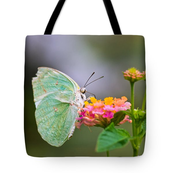 Lemon Emigrant Butterfly Tote Bag