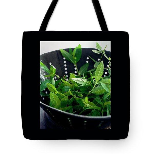 Lemon Verbena Herbs Tote Bag