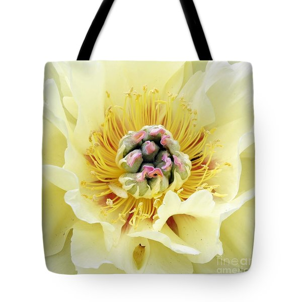 Tote Bag featuring the photograph Lemonade by Lilliana Mendez
