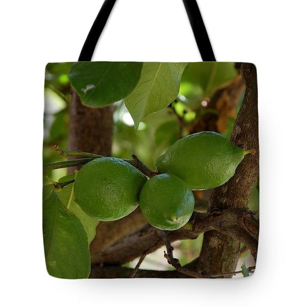 Lemons Trio Tote Bag by Dany Lison