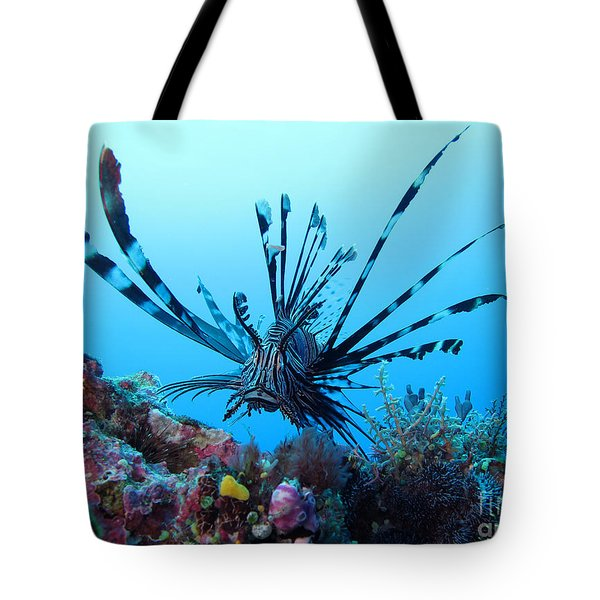 Tote Bag featuring the photograph Leon Fish by Sergey Lukashin