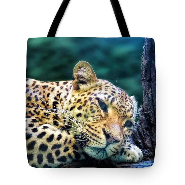 Tote Bag featuring the photograph Leopard 1 by Dawn Eshelman