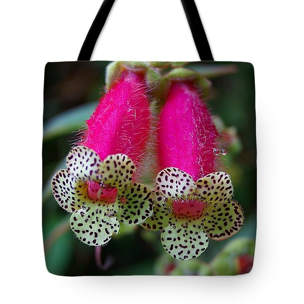 Leopard Flower - K. Digitaliflora Tote Bag by Blair Wainman