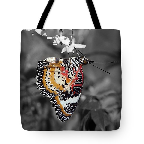 Tote Bag featuring the photograph Leopard Lacewing Butterfly Dthu619bw by Gerry Gantt