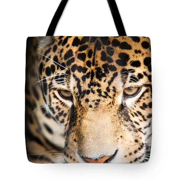 Leopard Resting Tote Bag