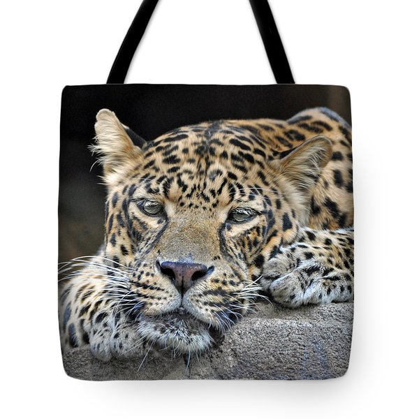 Tote Bag featuring the photograph Leopard by Savannah Gibbs