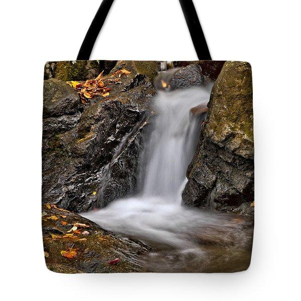 Lepetit Waterfall Tote Bag by Susan Candelario