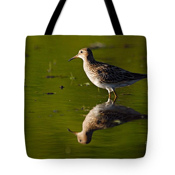 Lesser Yellowlegs Tote Bag by Larry Ricker