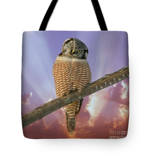 Lest Ye Be Judged Tote Bag by Heather King