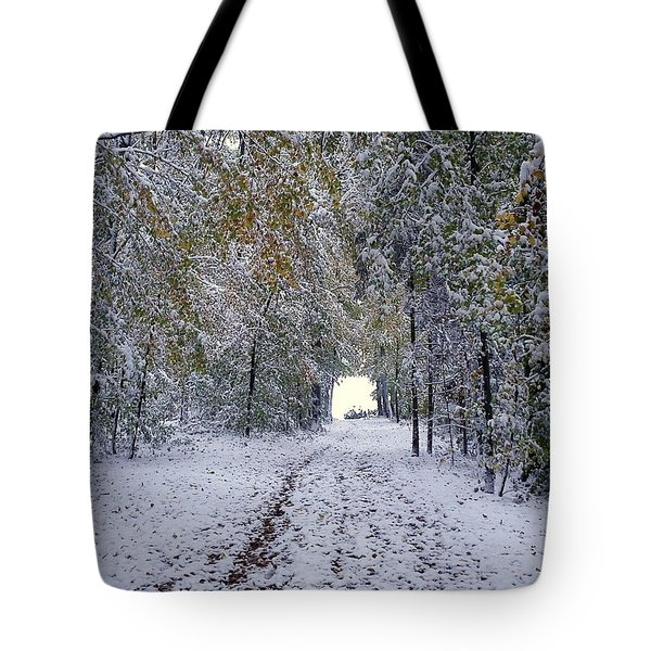 Tote Bag featuring the photograph Let It Snow by Felicia Tica