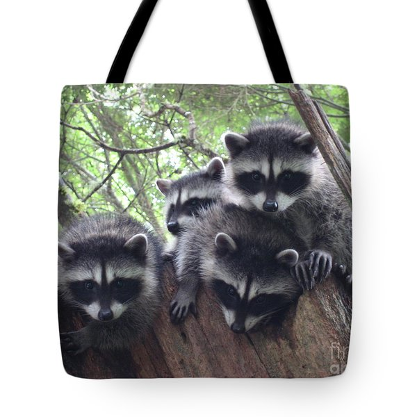Let Me In There Tote Bag by Kym Backland