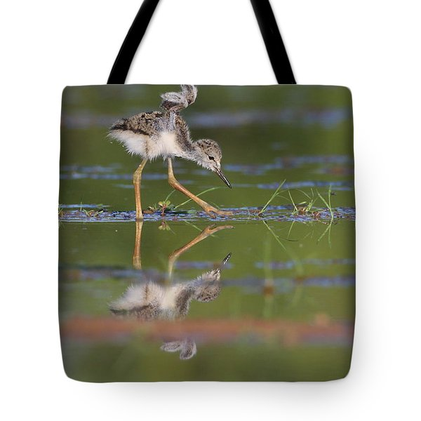 Let Me See Your Wings Tote Bag