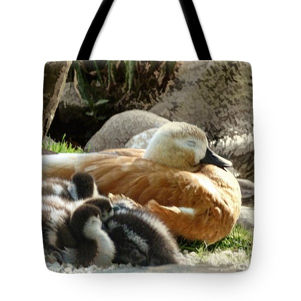 Let Sleeping Ducks Lie Tote Bag