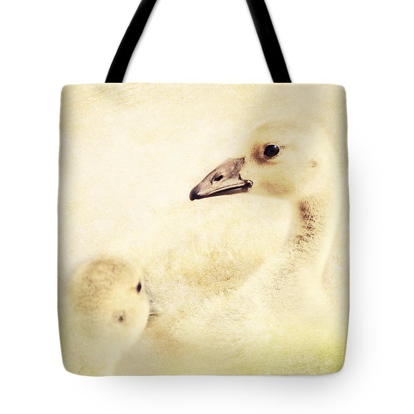 Let's Go For A Swim Tote Bag