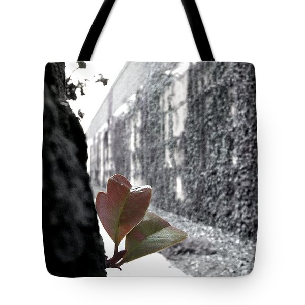 Let's Go Together Tote Bag by Glenn McCarthy Art and Photography