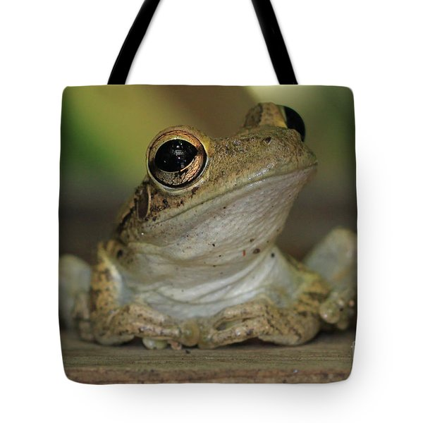Let's Talk - Cuban Treefrog Tote Bag